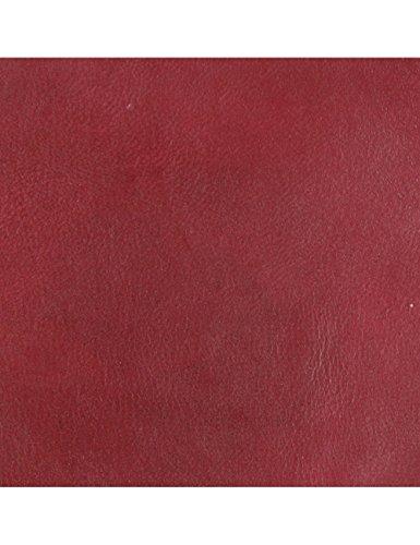 Alta Pelle – Riparazione graffi di gatto – Riparazione pelle – Pelle acero – 60 ml – Bordeaux