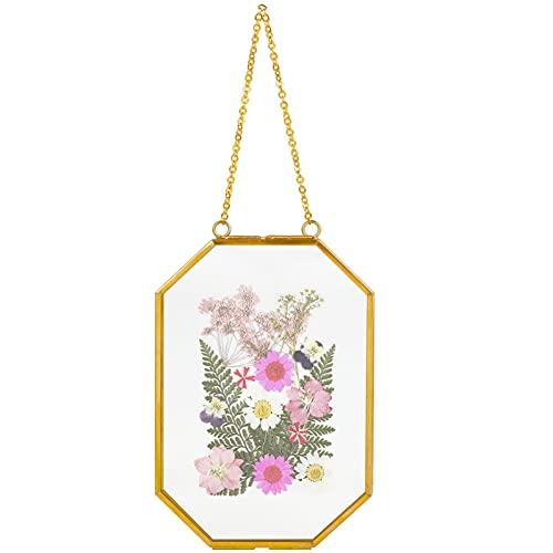 Outgeek Marco flotante de cristal dorado de 10 x 15 cm para colgar marcos de flores prensadas pequeñas flores secas, arte de pared DIY...