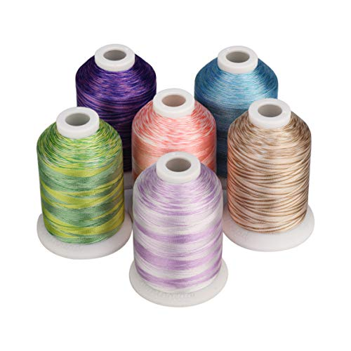 Simthread 6 Colors Polyester Variegated Embroidery Machine Thread 1100 Yards (1000M) for Decoration Babylock Singer Brother Janome Pfaff Husqvarna Embroidery and Sewing Machine - Anemone Garden