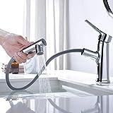 WELQUIC-2 Funciones Grifo extraíble de baño con Válvula de Cerámica,Grifos para Fregadero de lavabo,Acero Inoxidable Grifo de Cocina sin Plomo