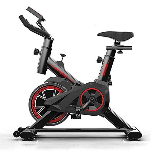 RLF LF Bicicleta Estática para El Hogar Bicicleta De Spinning, Bicicleta Estática Vertical con Pantallas LCD Súper Silenciosas, Resistencia Infinita Equipo De Ejercicios,B