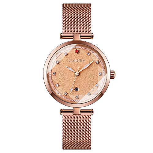 CakCity Fashion Elegant Watches for Women - Luxury Analog Womens Watch with Date Casual Luminous Quartz Ladies Wrist Watch with Stainless Steel Mesh Band