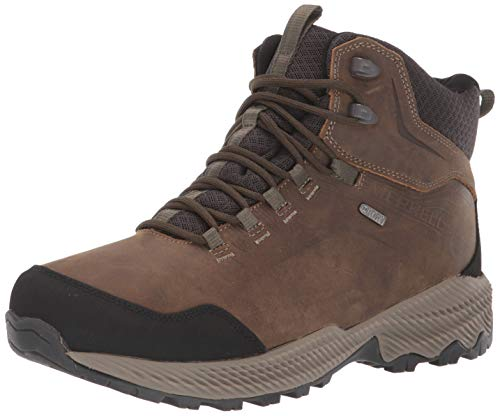 Merrell mens Forestbound Mid Wp Hiking Boot, Cloudy, 10.5 US