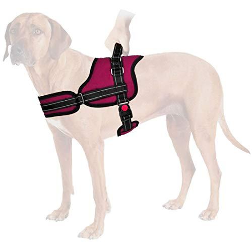 SlowTon Sin tirones Arnés de Perro, Suave Malla Acolchada Ajustable Fácil de Poner y Quitar el arnés con Hebilla de Bloqueo para Perros Grande Mascotas Transpirable