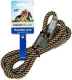 Cesar Millan Slip Lead Leash Dog Leash in Training Leash Regular Black Tan product image