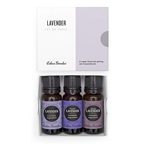 Edens Garden Lavender Essential Oil 3 Set, Best 100% Pure Aromatherapy Sampler Kit (For Diffuser & Therapeutic Use), 10 ml