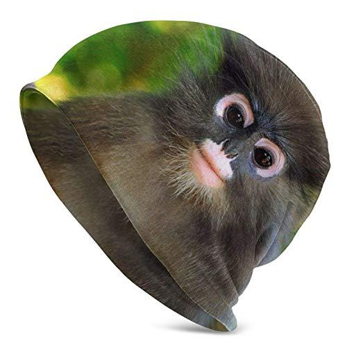 BGDFN Baby Monkey Wallpapers Gorro de Punto Gorro cálido Gorros elásticos Suaves con puños de Calavera Gorro Diario para Unisex Negro