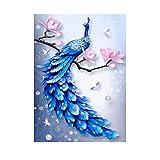 DIY 5D Diamante Pintura Kit & Pintura Acrílica por Números, Diamantes de imitación Bordado Pintura al Óleo Artesanía para Adultos - Pavo Real (11,8 * 15,7inch)