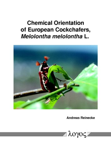 Chemical Orientation of European Cockchafers, Melolontha melolontha L.