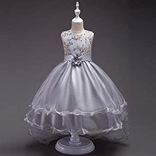 Luxury Princess Dress Embroidered Flower Children Dress Children Dress Princess Dress Girls Skirt Trailing Wedding Dress Gown Level ryq (Color : Grey, Size : 110cm)