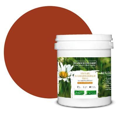Peinture naturelle écologique aspect VELOURS NATURA - intérieur extérieur - 43 couleurs (1 L, 12...