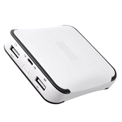 MediaRange MR744 Akku (10400mAh, Dual USB Port)