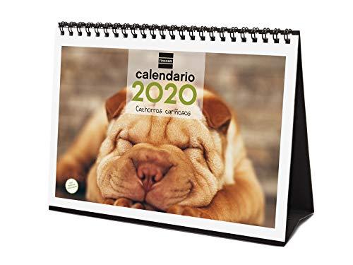 Calendario sobremesa cachorros 2020