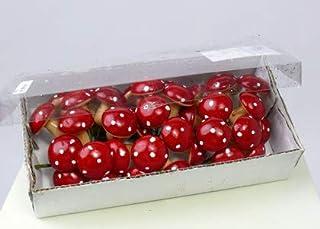INNA-Glas Set 6 x Amanite Tue-Mouches en Plastique BERTI sur Piquet, 36 pcs, Rouge-Blanc, 3cm - Matériel pour Fleuriste/Dé...
