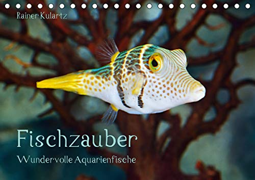 Fischzauber - Wundervolle Aquarienfische (Tischkalender 2021 DIN A5 quer)