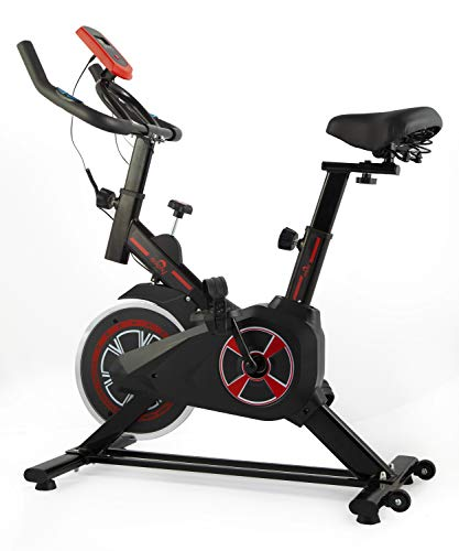 Dolphy Indoor Cycling Bike, Silent Belt Drive Exercise Bike Stationary Bicycle with Steel Flywheel, Adjustable Seat and Handlebar, LCD Monitor, Heart Rate Monitor