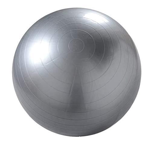 Natural Logistics Fitball 65-75cm. Pelota de Yoga, Pilates, Fitness (Gris, 65)