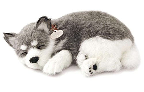 Perfect Petzzz Alaskan Husky cachorro que respira the Breathing Puppy