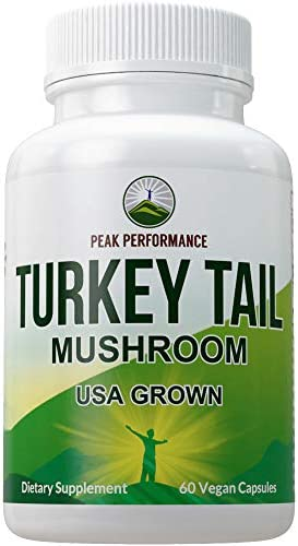 Turkey Tail Mushroom Supplement USA Grown by Peak Performance Immune System Support Naturally product image