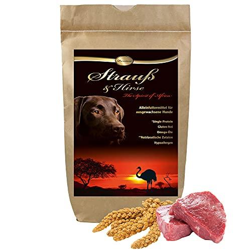 Schecker Dogreform Croquettes pour chien sans gluten pour autruche et millet 3 kg