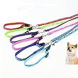Arnés para perros Perro mascota cachorro gato arnés ajustable con correa de plomo 10 colores para elegir juguetes correa collar de cadena juguete interactivo ( Color : Random color , Size : 120cm )