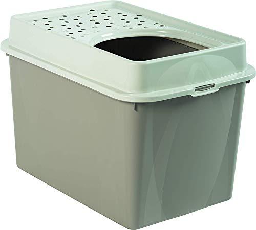 Rotho Berty Cassetta per la spazzatura alta con ingresso dall'alto, Plastica PP senza BPA, Marrone(Cappuccino), 57.2 x 39.3 x 40.4 cm
