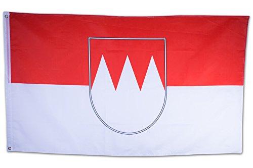 SCAMODA Bundes- und Länderflagge aus wetterfestem Material mit Metallösen (Franken) 150x90cm