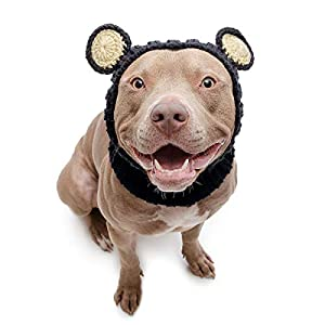 Zoo Snoods Black Bear Dog Costume – Neck and Ear Warmer Hood for Pets (Large)