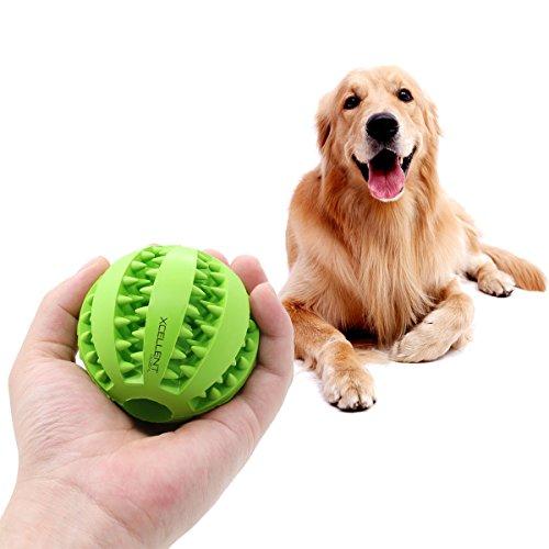 Xcellent Global PT034 - Pelota rellenable para Mascotas, Goma no tóxica, Resistente a Las mordidas, Color Verde
