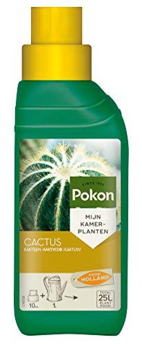 Pokon Kakteen-Flüssigdünger, für alle Kakteen und Sukkulenten, Spezialdünger mit Magnesium (MgO) und Eisen (Fe), 250ml