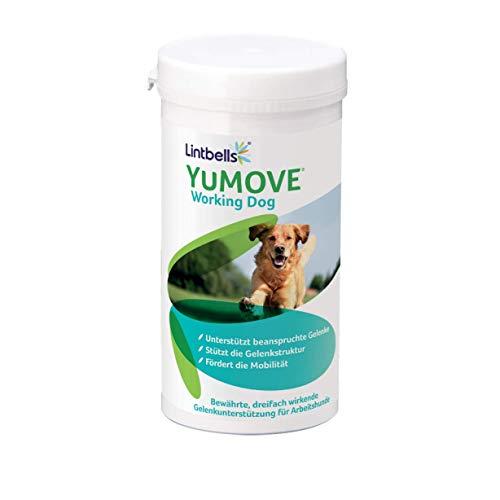 Lintbells YuMOVE Gelenk Nahrungsergänzungsmittel, Ergänzungsfutter gegen Gelenkprobleme für Arbeitshunde und Sporthunde, fördert die Verdauungsfunktion, 480 mundgerechte Gelenktabletten