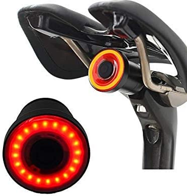 SMART Bicycle Brake Tail Light USB Rechargeable LED 100 Lumen Oil Slick Bicycle