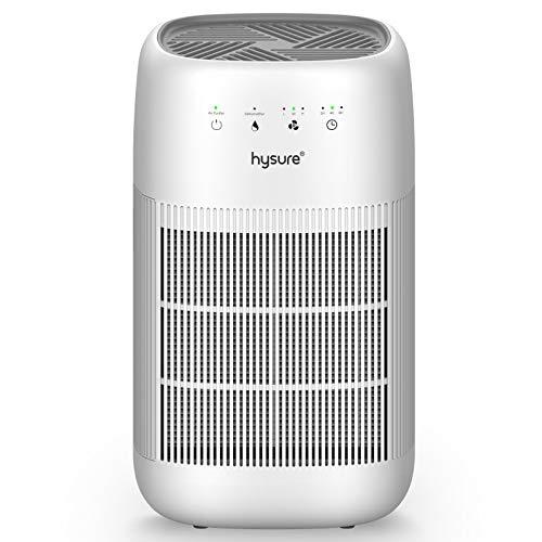 Hysure Deshumidificador purificador de Aire Q10, deshumidificador 2 en 1 para el hogar con Filtro HEPA y Filtro de carbón Activo, filtración eficiente Avanzada de 3 Capas…