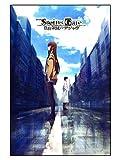 CoolChange Puzle de Steins;Gate, 1000 Piezas, Tema: Rintarou & Kurisu