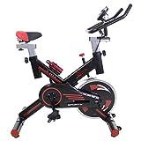 Riscko Bicicleta Spinning Pro Ergonomic, Sistema Silent MAX, Disco inercia 24kg Máxima...