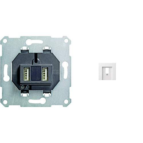 Gira 235900 USB Spannungsversversorgung 2-fach Einsatz & 027603 TAE-Abdeckung ST55 reinweiß-glänzend, 027603
