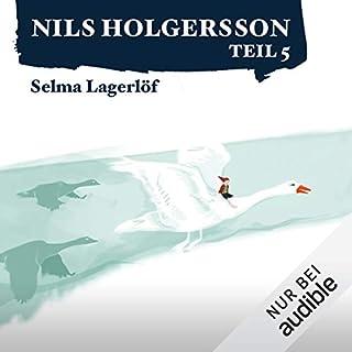 Die wunderbare Reise des kleinen Nils Holgersson mit den Wildgänsen 5 Titelbild