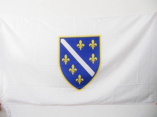 AZ FLAG Flagge BOSNIEN-HERZEGOWINA 1992-1998 90x60cm - BOSNISCHE Fahne 60 x 90 cm Scheide für Mast - flaggen Top Qualität