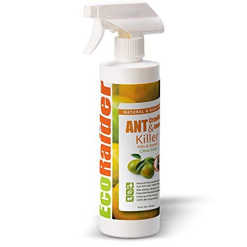 EcoRaider Insecticida para hormigas e insectos rastreros, 16 OZ listo para usar, para interiores y exteriores, mata y repele, prevención duradera, fórmula natural no tóxica, agradable aroma a cítricos
