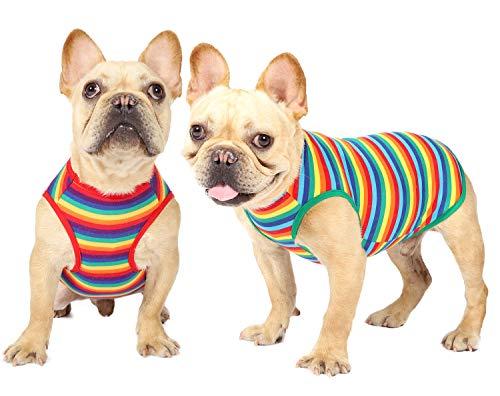 Hunde-Shirt, Regenbogen, gestreift, Kleidung für kleine, mittelgroße und große Hunde, Jungen und Mädchen