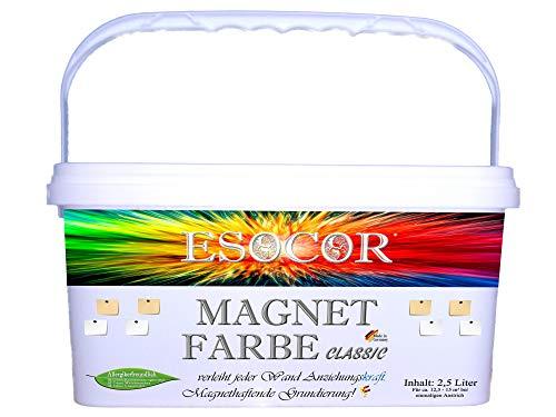 2,5 Liter ESOCOR MAGNETFARBE CLASSIC + 2 Pin Magnete – besonders allergikerfreundlich – magnethaftend
