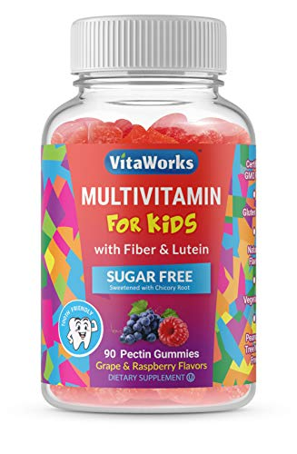 VitaWorks Sugar Free Multivitamin for Kids – with Fiber and Lutein – Great Tasting Grape and Raspberry Flavored Gummy – Gluten Free, All Natural, Vegetarian, GMO Free Chewable – 90 Gummies – 45 Doses