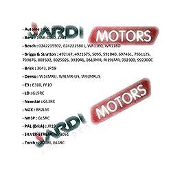 Jardiaffaires Bougie Champion RJ19LM pour Moteur Thermique
