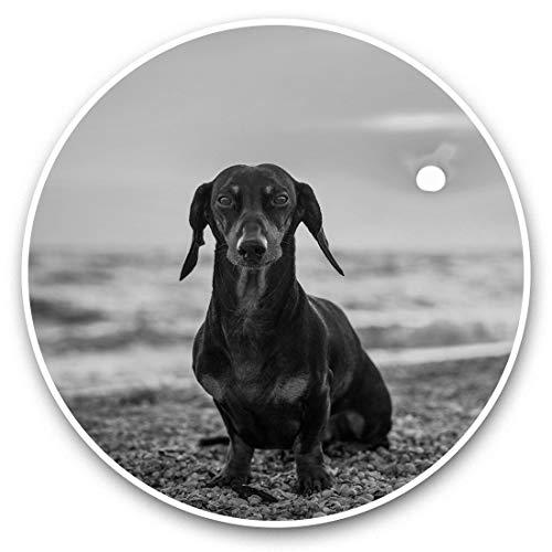 Impresionantes pegatinas de vinilo (juego de 2) 20 cm (bw), diseño de perro salchicha marrón en la playa, pegatinas divertidas para portátiles, tabletas, equipaje, reserva de chatarras, neveras, regalo fresco #42778