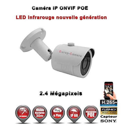 IP Tube Vandal IR 30 m ONVIF POE Sony 1080P 2,4 MP/Ref: EC-C2MP - Digitale videocamera