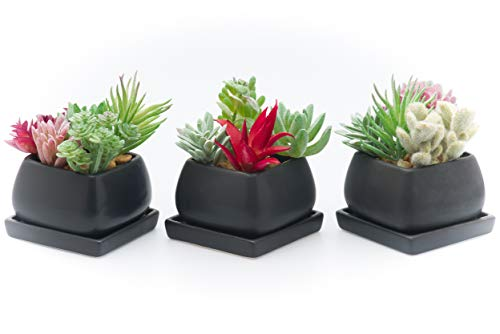 KRALIX Small Ceramic Copper Square Planters - Three Pots with Drainage Hole and Tray for Any House Plants, Cactus, Flowers or Herbs (Black)