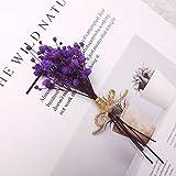 Mini Ramo de Flores secas Naturales Reales, Rosa, Pampas, Hierba, Plantas de gypsophila, decoración del hogar, Navidad, año Nuevo, Regalos, Manualidades de Bricolaje - Gypsophilapúrpura
