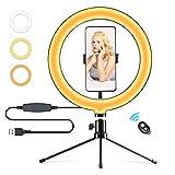 Anneau lumineux à selfie 10'' avec support de téléphone portable, vidéo photographie,120 ampoules 3 modes de lumière et 10 niveaux de luminosité