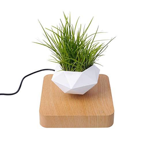 Schwebender Luft-Bonsai-Topf, Kreativer Magnetischer Levitations-Blumentopf-Pflanzer, Magnetischer Schwebende Pflanze-Topfpflanzen-Luftverzierungen, Für Haus & Garten, Schreibtischdekoration
