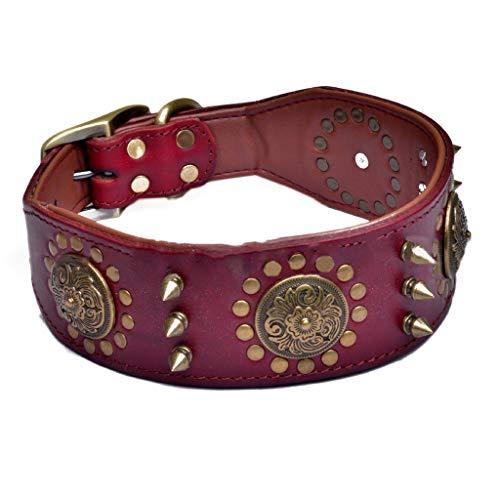 YOURPAI Collares para perros, cuello de perro de cuero elegante ajustable tachonado suave acolchado interior cuero marrón